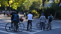 Bicicletas Central Park
